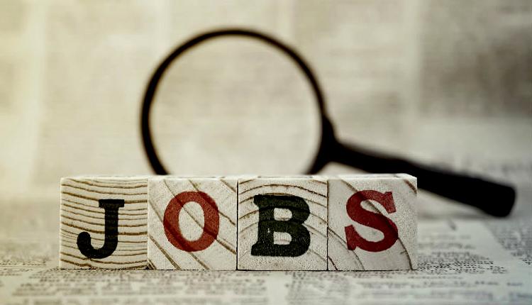 recruitment-job-naukri